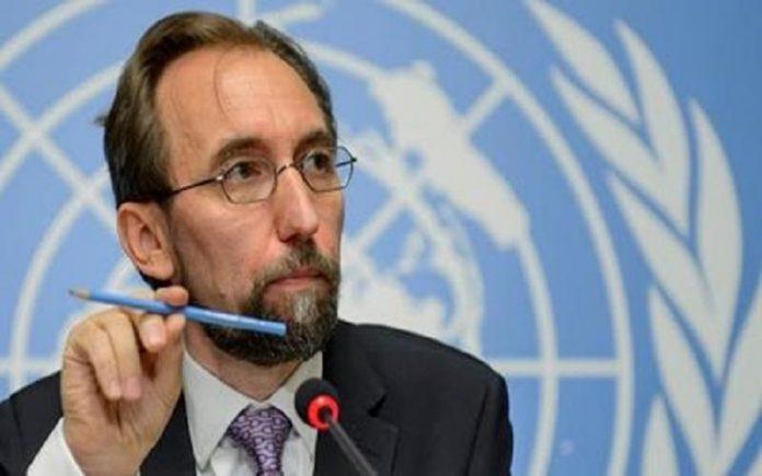 زید رعد الحسین رئیس کمیساریای عالی-min